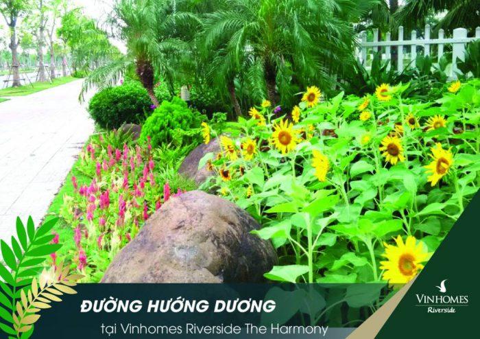 biet-thu-vinhomes-riverside-huong-duong-harmony