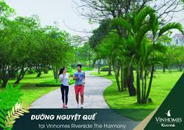 vinhomes-riverside-nguyet-que-vinhomes-harmony-long-bien-1