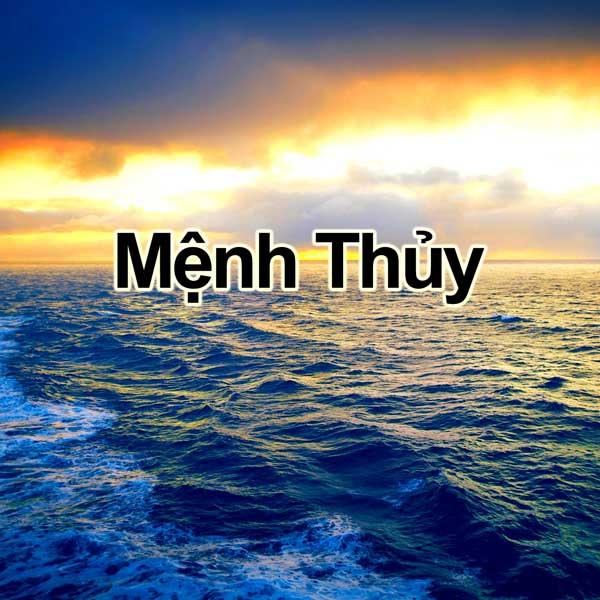 nguoi-menh-thuy-hop-mau-nao